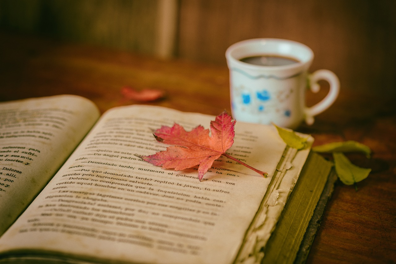 a leaf on a book